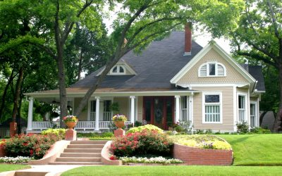 6 Tips for Maintaining Your Trees